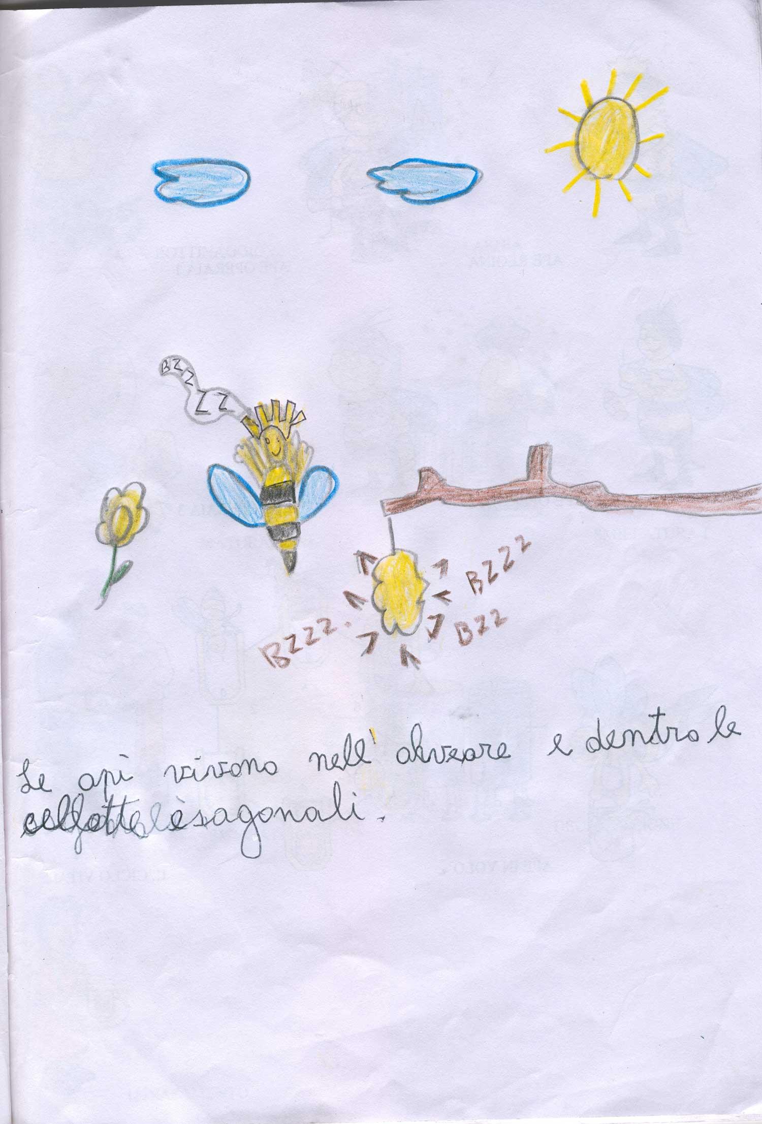 Le api e il loro meraviglioso mondo percorso didattico for Immagini api per bambini